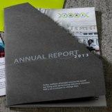 IDRI-Annual-Report-thumb